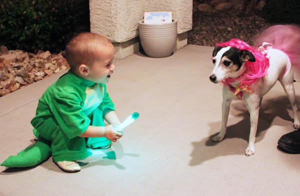 hello halloween doggie