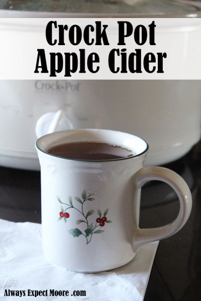 crock pot apple cider - takes just 4 ingredients, and 5 minutes of prep time
