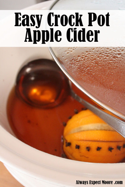 Make easy crock pot spiced apple cider - takes only 5 minutes of prep time, and 4 ingredients!