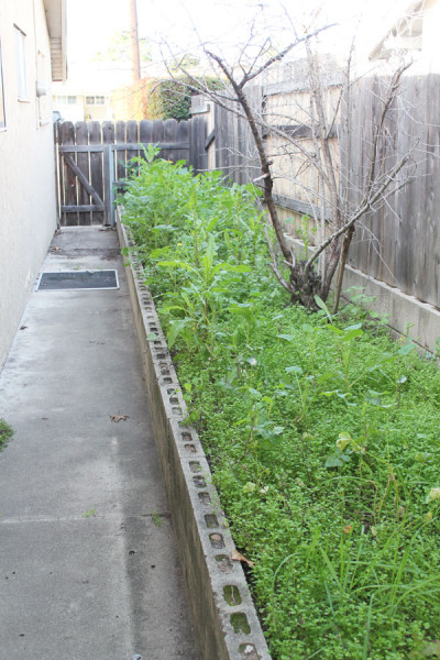 side-yard-to-front